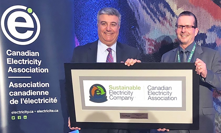 CEA Awarding Mike Marsh, CEO of SaskPower with the Sustainable Electric Company Award