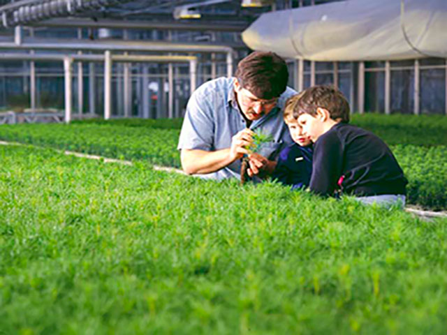 Man showing son seedlings